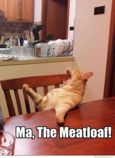 """""""Ma The Meatloaf! We want it now!"""" Do you know what movie this is from? lol"""