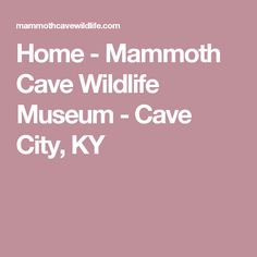 Home - Mammoth Cave Wildlife Museum - Cave City, KY