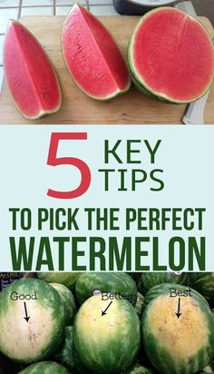 See the 5 key tips to pick the perfect watermelon. See the 5 key tips to pick the perfect watermelon. Picking Watermelon, Watermelon Recipes, Fruit Recipes, Cooking Recipes, Healthy Recipes, Watermelon Ripeness, Cutting A Watermelon, Cooking Icon, Chicken Recipes