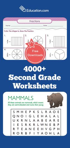 Help your second grader practice key skills with this great collection of worksheets in all subject areas. 2nd Grade Worksheets, School Worksheets, 2nd Grade Math, Second Grade, Seventh Grade, Fourth Grade, Learning Activities, Teaching Resources, Teaching Aids
