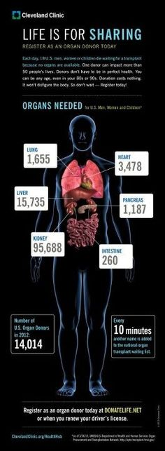 Why Donate Organs? Because You'll Save Many Lives (Infographic) One donor can benefit 50 people. Every 10 minutes, a new person adds his or her name to the national waiting list for an organ transplant. Donation Quotes, Living Kidney Donor, Organ Transplant, Cleveland Clinic, Found Out, Waiting List, Diet Detox, Detox Diets, Cystic Fibrosis