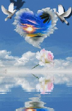 belle image - Page 3 Dove Images, Dove Pictures, Jesus Pictures, Beautiful Love Pictures, Beautiful Gif, Flower Phone Wallpaper, Nature Wallpaper, Gif Bonito, Image Jesus