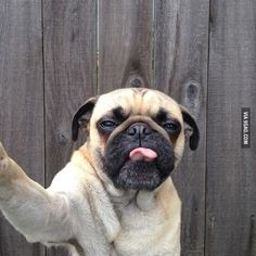 Selfie Lvl: Tongue out - 9GAG