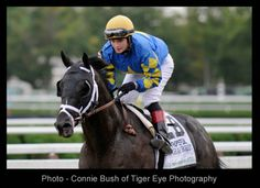 Q&A with Rosie Napravnik, Hats Off to the Horses - Photo by Connie Bush - at http://hatsandhorses.wordpress.com/2013/10/09/a-passion-for-horses-an-interview-with-rosie-napravnik/