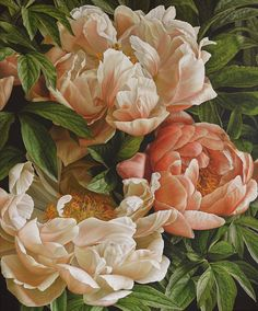 Mia Tarney, Coral Charm II, 2014   Lucy B Campbell