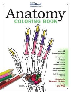 a descriptive overview of each illustration including major features key points and coloring guidelines 96 tear out muscle flashcards - Neuroanatomy Coloring Book