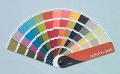 Dark Autumn in 16 seassons, CMAS- Color Me A Seasson