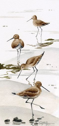 Set of 2 Sand Pipers Art Prints - Watercolor Painting - Signed by Artist DJ Rogers - Wildlife - Wall Decor, Watercolor Bird, Watercolor Animals, Watercolor Paintings, Original Paintings, Watercolor Artists, Watercolor Portraits, Watercolor Landscape, Bird Paintings, Sand Painting
