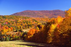 The Berkshires in MA.