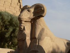 This great Temple of Amon Ra was known during the Middle Kingdom period as Ipt-Swt, which means the Selected Spot. It was also called Pr-Imn, which means the House of Amon. The name Al-Karnak in Arabic was derived from Karnak Amenhotep Iii, Amon, Ancient Artifacts, Ancient Egypt, Holidays In Egypt, Places In Egypt, Sphinx, Egyptian Temple, Site Archéologique