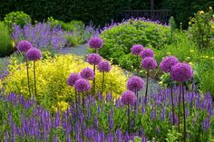 Purple adds so much life in your Garden! Use plants like Lavender and add not only color but beautiful scent to your Garden! - Most Beautiful Gardens