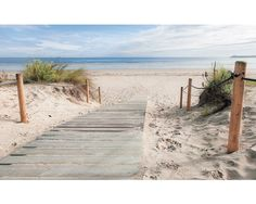 Sincere Glitter Wall Mural House of Hampton Primary Material: Paper, Size: 254 x Beach Wall Murals, Beach Wall Decor, Beach Canvas Art, Wall Canvas, Beach Pictures, Print Pictures, Wall Pictures, Images Murales, Poster Mural
