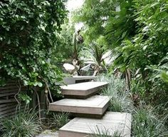 Unusual stacked decking in a tropical garden by Cameron Landscape Design Landscape Steps, Garden Landscape Design, Landscape Plans, Landscape Architecture, Landscape Designs, Small Gardens, Outdoor Gardens, Timber Stair, Timber Deck