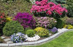 Практически каждый обладатель загородного участка мечтает о замечательном цветнике, который радовал бы своим цветением на протяжении всего теплого периода. Как же этого добиться? Перечень растений д…