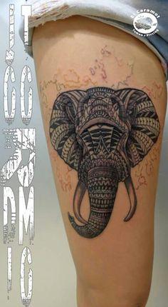 Elefante mandara, en proceso