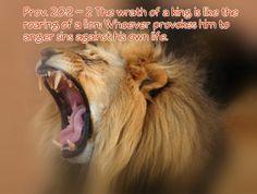 Prov. 20:2