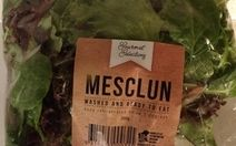 Fresh Salad Mix Mesclun by Gourmet Selections Review