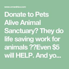 Donate to Pets Alive Animal Sanctuary They do life saving work for animals ❤️Even $5 will HELP. And your $5 will be matched by a generous donor. So your $5 will turn into $10!!!!!www.crowdrise.com pets-alive-savingpets fundraiser meganlabato?utm_source=dash-setup-cr&utm_platform=fb&utm_device=mobile?pc=fb-pc-code