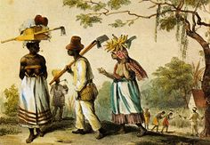 bush negroes of surinam and the Bush negroes lack sophistication, intelligence, and cleanliness and  the  revolted negroes of suriname in guiana on the wild coast of.