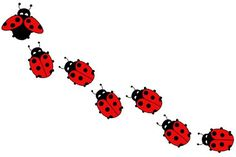 The Legend Of The Lady Bug And How It Was Named
