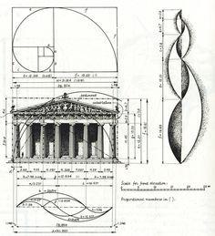 Geometry of The Golden Ratio in architecture, art, and nature. #Fibonacci