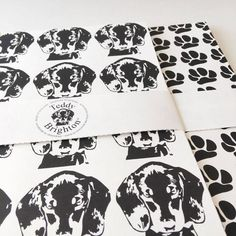 Teddy Brighton Launch Collection - Gift Wrap
