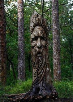 40 Ideas Diy Wood Carving Tree Stumps For 2019 Tree Carving, Wood Carving Art, Wood Art, Wood Carvings, Wood Sculpture, Sculptures, Tree People, Tree Faces, Tree Art