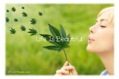 Life is Beautiful Marijuana Leaf Weed Memes #weedmemes