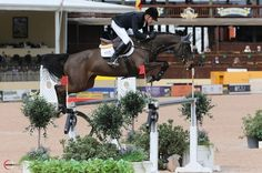 Show Jumping's Holger Hetzel Sued for $1M-plus for Fraud, Negligence | Rate My Horse PRO
