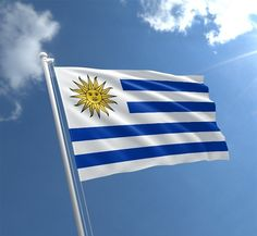 Uruguay Flag, Greece, Places To Visit, World, Blog, Athens, Fondant, Quotes
