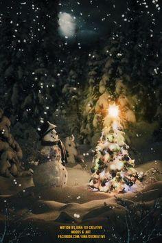 Christmas Scenery, Christmas Night, Christmas Music, Christmas Pictures, Christmas Themes, Merry Christmas, Christmas Animated Gif, Nature Pictures, Beautiful Pictures