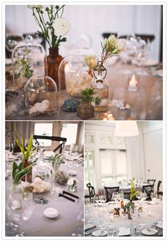 tin potted plants, terrariums and crystal and stone centerpieces