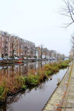 Photo I Amsterdam by Andreia Ferreira on 500px