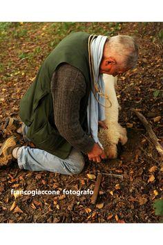 Truffle hunting in La Morra, Barolo wine zone in Piemonte, Italy