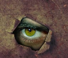 The Feeling of Being Watched - Proof of Extrasensory Perception? Staring At You, The Four Loves, This Is My Story, Psychic Abilities, Still Love You, Smile Because, Liking Someone, Nature Quotes, What To Read