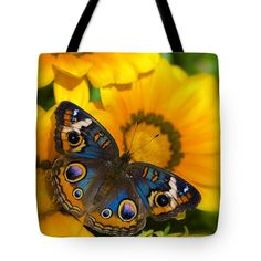 Buckeye Butterfly In All It's Beauty Tote Bag by Saija Lehtonen