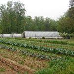 Peregrine Farm.
