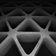 Mimicking nature's cellular architectures via 3D printing | Harvard John A. Paulson School of Engineering and Applied Sciences