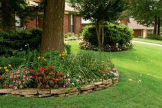 Shade Garden Tutorial: Defining Light, Partial and Full Shade Plants