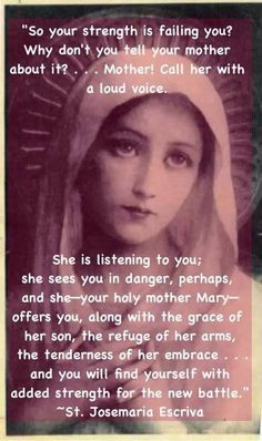 Quotes About Mary (11 – 15)Catholic Gallery | Marian ...
