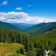 #Voineasa is a Romanian spa town in #Vâlcea County; #Romania;