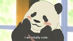 Panda-kun from polar bear café