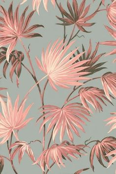 Va Va Frome Powder Pink Wallpaper by Pearl Lowe – yogaroom Palm Leaf Wallpaper, Botanical Wallpaper, Wallpaper Roll, Flower Wallpaper, Pattern Wallpaper, Pink And Green Wallpaper, Blush Pink Wallpaper, Pearl Lowe, Rockett St George