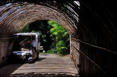 A bamboo tunnel at Six Senses Yao Noi, Thailand