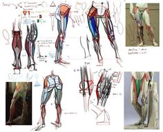 references-legs20
