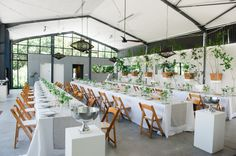Real Wedding: Candi & Alastair - The Conservatory, Franschhoek - Creation Events Wedding Planner, Destination Wedding, Wedding Venues, Italian Lunch, South African Weddings, Conservatory, Real Weddings, Color Schemes, Table Settings