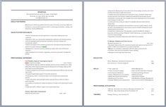 sap trainer resume resume pinterest