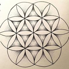 from @f.jowett -  Finished flower of life with dot work  #sketchbook #drawing #design #sketch #flower #geometry #geometric #sacredgeometry #floweroflife #finished #mehndi #mandala #mandalala #mandalamaze #mandaladesign #mandaladrawing #illustrator #illustrate #illustration #create #creative #dotwork #doodle #zendala #zendoodle #zentangle