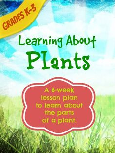A 6-week lesson plan - all about the parts of a plant. Perfect for grades K-3. homeschool lesson plans | science lesson plans