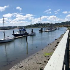 Coos Bay Boardwalk In Oregon Leads To One Of The Most Scenic Views In The State Coos Bay Oregon, Oregon Coast, Great Places, Places To Go, Oregon Travel, Local Attractions, Walking In Nature, Stunning View, Ocean Beach